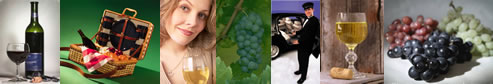 Long Island Wine Tours