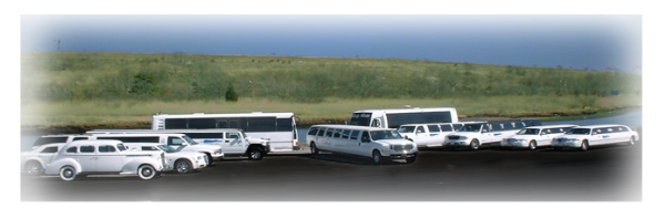 Long Island Vineyard Tours picture of our fleet